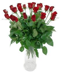 Edirne online çiçek gönderme sipariş  11 adet kimizi gülün ihtisami cam yada mika vazo modeli