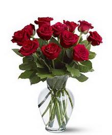 Edirne çiçekçiler  cam yada mika vazoda 10 kirmizi gül