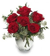 Vazo içerisinde 5 adet kırmızı gül  Edirne anneler günü çiçek yolla
