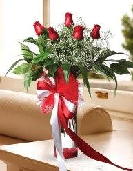 Camda 5 kırmızı gül tanzimi  Edirne online çiçek gönderme sipariş