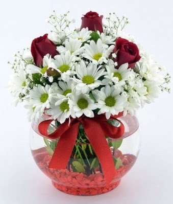 Fanusta 3 Gül ve Papatya  Edirne çiçek online çiçek siparişi