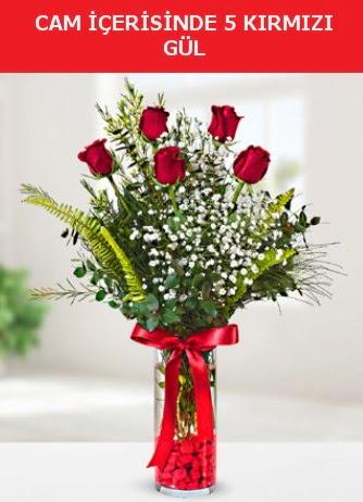 Cam içerisinde 5 adet kırmızı gül  Edirne hediye sevgilime hediye çiçek