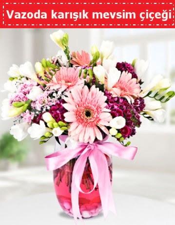 Vazoda karışık mevsim çiçeği  Edirne cicekciler , cicek siparisi