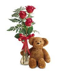 oyuncak ve güller tanzim   Edirne online çiçek gönderme sipariş