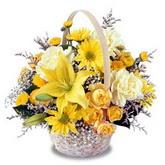 sadece sari çiçek sepeti   Edirne çiçekçiler