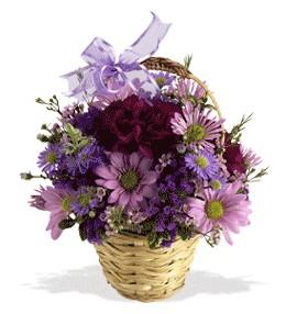 Edirne çiçek yolla , çiçek gönder , çiçekçi   sepet içerisinde krizantem çiçekleri