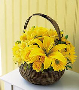 sepet içerisinde sarinin sihri  Edirne online çiçekçi , çiçek siparişi