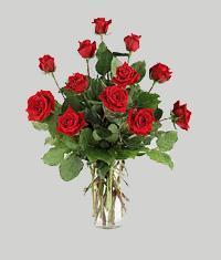 Edirne online çiçekçi , çiçek siparişi  11 adet kirmizi gül vazo halinde