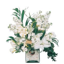 Edirne çiçek mağazası , çiçekçi adresleri  sadece beyazlardan olusmus mevsim cam yada mika tanzim