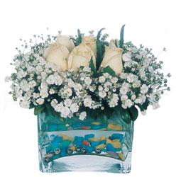 Edirne anneler günü çiçek yolla  mika yada cam içerisinde 7 adet beyaz gül