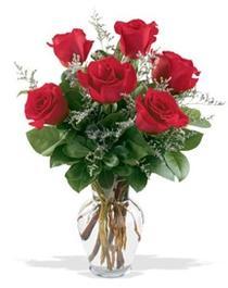 Edirne çiçekçiler  7 adet kirmizi gül cam yada mika vazoda sevenlere