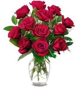 Edirne güvenli kaliteli hızlı çiçek  1 düzine kirmizi gül sevenlere özel vazo gülleri