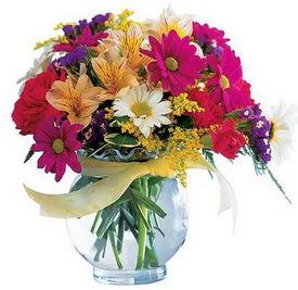 Edirne çiçek online çiçek siparişi  cam yada mika içerisinde karisik mevsim çiçekleri