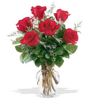 Edirne online çiçekçi , çiçek siparişi  cam yada mika vazoda 6 adet kirmizi gül