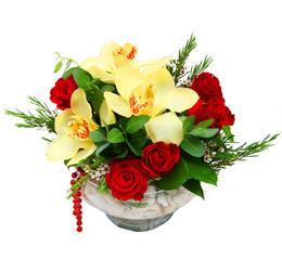 Edirne çiçek siparişi vermek  1 kandil kazablanka ve 5 adet kirmizi gül