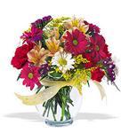 Edirne cicekciler , cicek siparisi  cam yada mika vazo içerisinde karisik kir çiçekleri