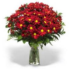 Edirne internetten çiçek siparişi  Kir çiçekleri cam yada mika vazo içinde