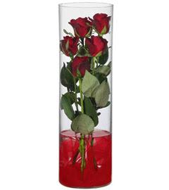 cam içerisinde 7 adet kirmizi gül  Edirne çiçek servisi , çiçekçi adresleri