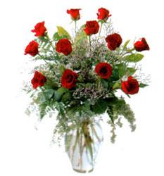 Vazo içerisinde 11 kirmizi gül  Edirne kaliteli taze ve ucuz çiçekler