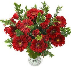 5 adet kirmizi gül 5 adet gerbera aranjmani  Edirne 14 şubat sevgililer günü çiçek