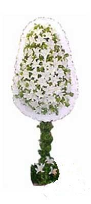 Edirne hediye sevgilime hediye çiçek  nikah , dügün , açilis çiçek modeli  Edirne güvenli kaliteli hızlı çiçek