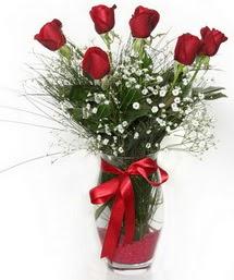 7 adet gülden cam içerisinde güller  Edirne İnternetten çiçek siparişi