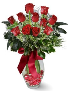 9 adet gül  Edirne çiçek online çiçek siparişi  kirmizi gül