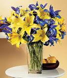 Edirne çiçek gönderme sitemiz güvenlidir  Lilyum ve mevsim  çiçegi özel