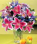 Edirne çiçek satışı  Sevgi bahçesi Özel  bir tercih