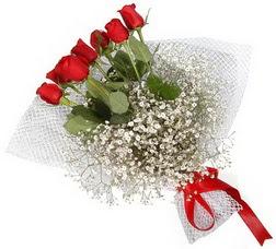 7 adet kirmizimi kirmizi gül buketi  Edirne çiçek yolla