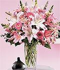 Edirne çiçek siparişi sitesi  Kazablanka biçme vazoda