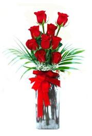 Edirne online çiçek gönderme sipariş  9 adet mika yada cam vazoda gül tanzimi
