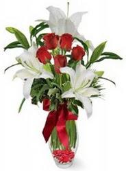 Edirne kaliteli taze ve ucuz çiçekler  5 adet kirmizi gül ve 3 kandil kazablanka