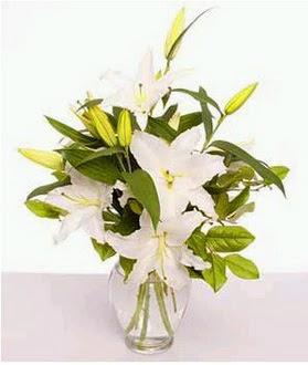 Edirne çiçek siparişi vermek  2 dal cazablanca vazo çiçeği