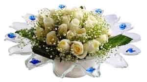 Edirne çiçek gönderme  11 adet Beyaz güller özel cam tanzim
