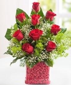 Cam içerisinde 9 adet kırmızı gül  Edirne çiçek online çiçek siparişi