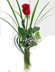 Cam içerisinde 1 kırmızı gül  Edirne çiçekçiler