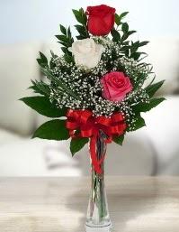 Camda 2 kırmızı 1 beyaz gül  Edirne uluslararası çiçek gönderme