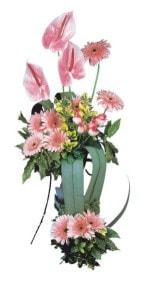 Edirne ucuz çiçek gönder  Pembe Antoryum Harikalar Rüyasi