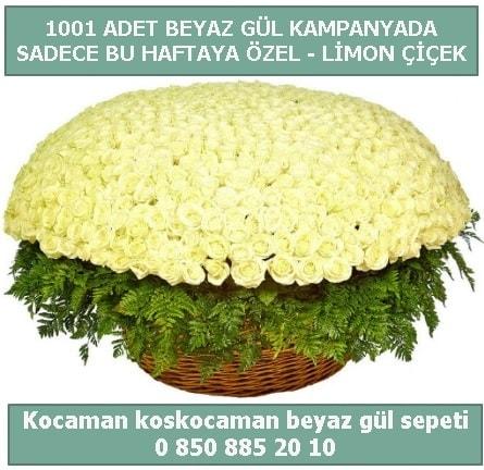 1001 adet beyaz gül sepeti özel kampanyada  Edirne çiçekçiler