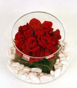Cam fanusta 11 adet kırmızı gül  Edirne çiçek siparişi vermek