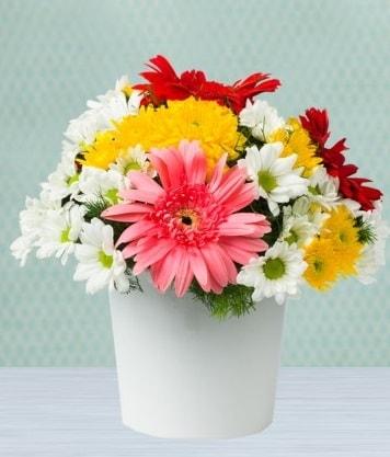 Seramik Vazoda Gelbera ve Papatya  Edirne çiçek siparişi vermek