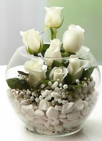 Beyaz Mutluluk 9 beyaz gül fanusta  Edirne hediye sevgilime hediye çiçek