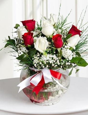 Aşk Küresi  5 beyaz 5 kırmızı gül fanusta  Edirne çiçek online çiçek siparişi