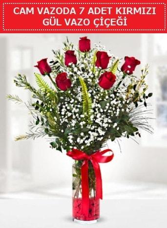 Cam vazoda 7 adet kırmızı gül çiçeği  Edirne çiçekçiler