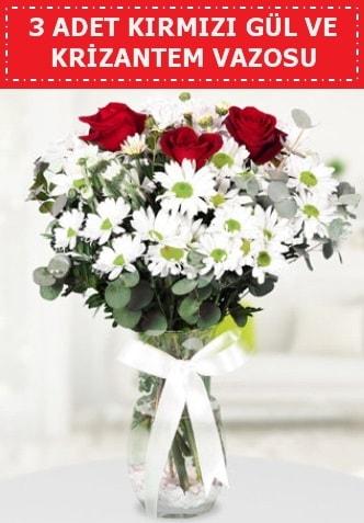 3 kırmızı gül ve camda krizantem çiçekleri  Edirne çiçek siparişi vermek